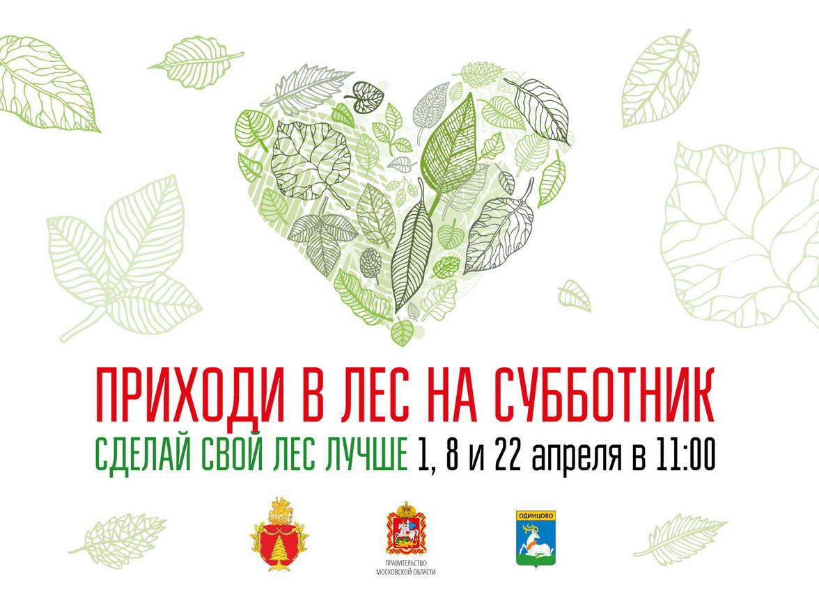 плакат приходи в лес на субботник Одинцовский парк
